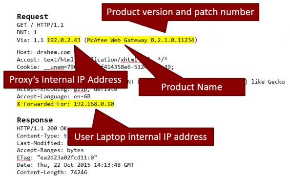 Figure 2: HTTP Request - Proxy Leaking Information